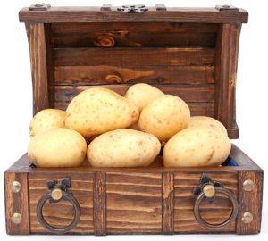 картофель должен хранится в темном месте.