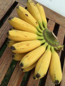 Бананы надо хранить аккуратно