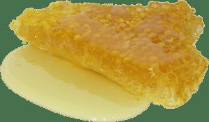Хранить мед в сотах не сложно