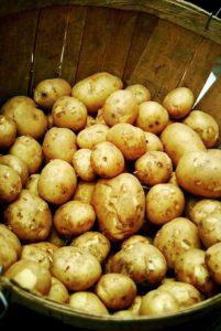 картофель в домашних условиях лучше хранить на балконе