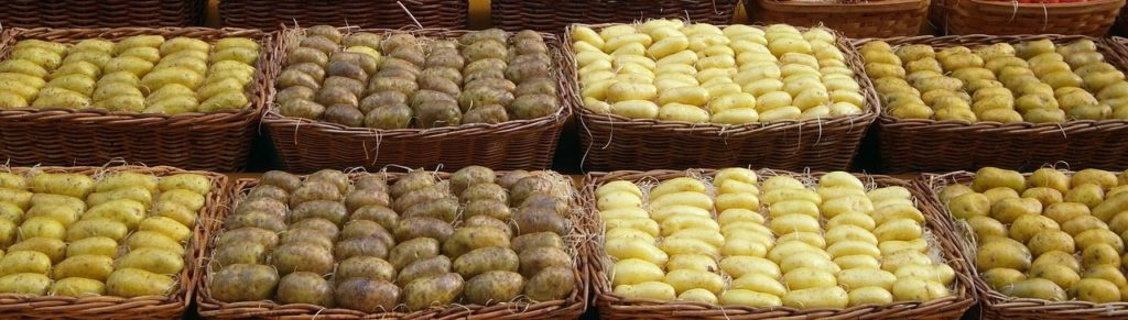 картофель разных сортов должен хранится раздельно