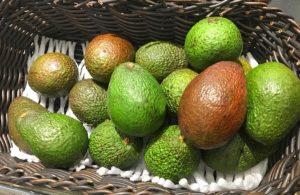 авокадо надо правильно выбрать