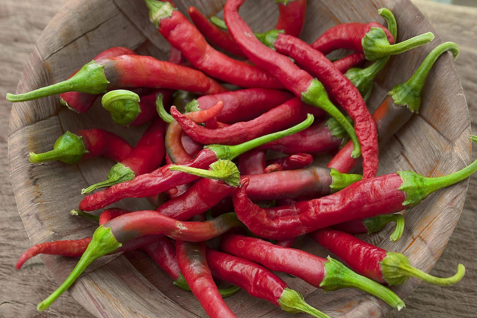 Как хранить перец чили (острый, горький)