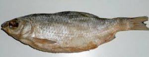 вяленую(сушеную)рыбу нужно держать в правильных условиях